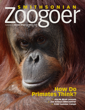 zoogoercover